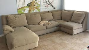 A Sofa-Cleaning Guide for Pet Owners